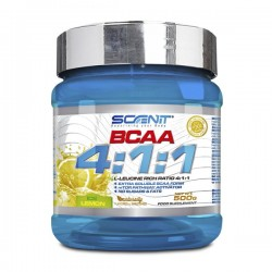 Bcaa 500gr Scenit