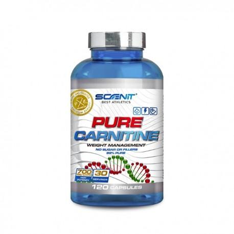 Pure Carnitine 120 caps Scenit
