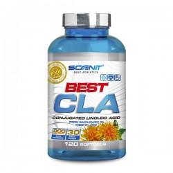 Best CLA 120 caps Scenit