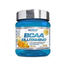 Bcaa + Glutamine 500gr Scenit